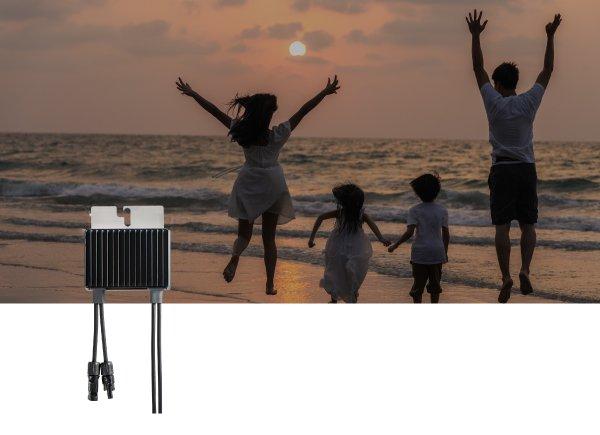 SolarEdge Power Optimizer 1:1