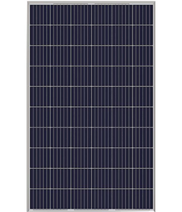 Renewsys Deserv Poly Crystalline