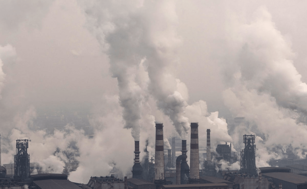 featuring Image of carbon zero-min